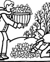 Frunze de toamna