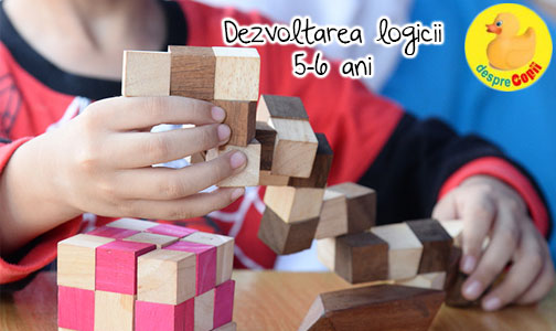 Dezvoltarea abilitatilor logice si rationamentului intre 5-6 ani