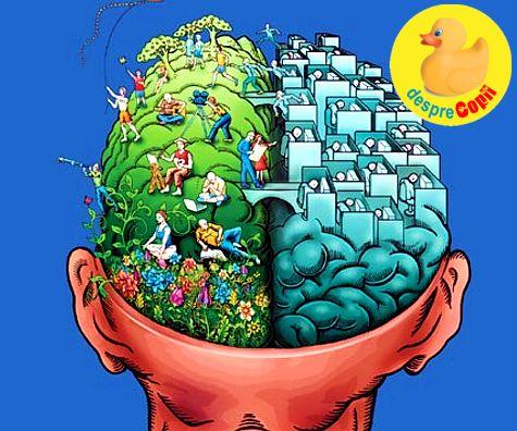 Creierul unui adolescent: despre vulnerabilitate, stres, curaj si lumea lor curajoasa