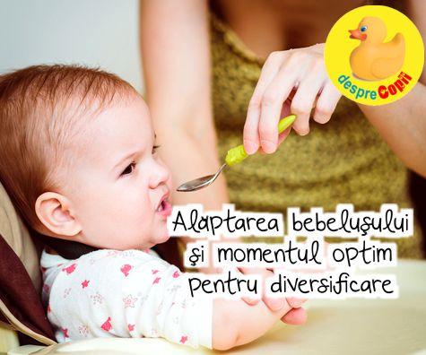 Alaptarea bebelusului si momentul optim pentru diversificare