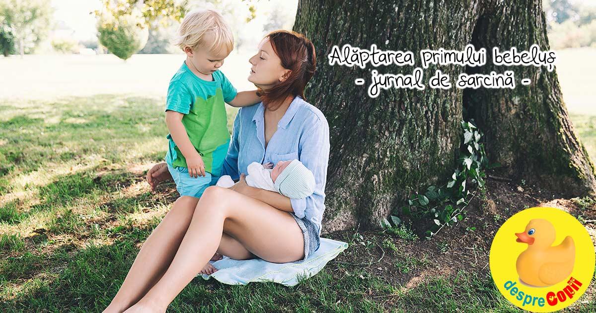 Experienta mea in legatura cu alaptarea primului bebelus - jurnal de sarcina