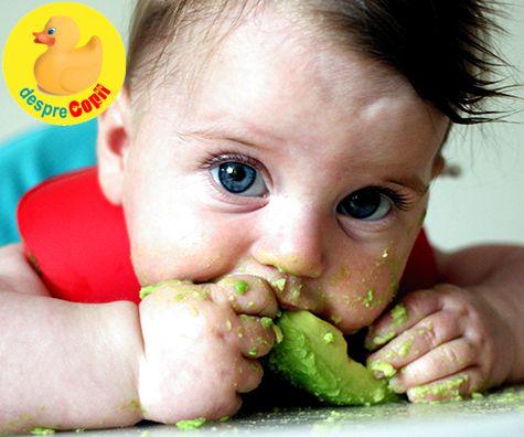 Autodiversificarea bebelusului: 6 lucruri importante de stiut de la inceput
