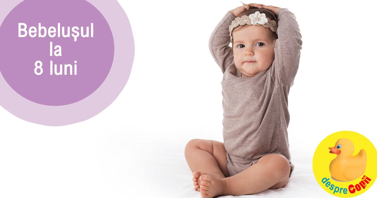 Bebelusul la 8 luni: in continua miscare si intr-o etapa intensa a cunoasterii
