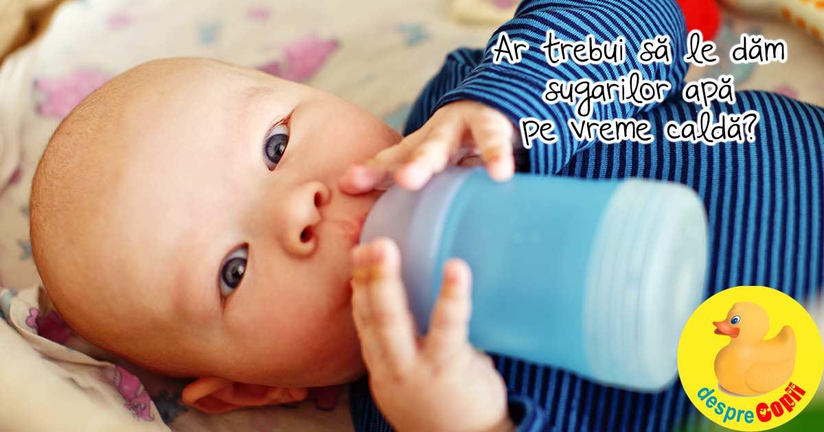 E foarte cald: ar trebui sa le dam sugarilor apa? Aceasta este recomandarea medicilor pediatri.