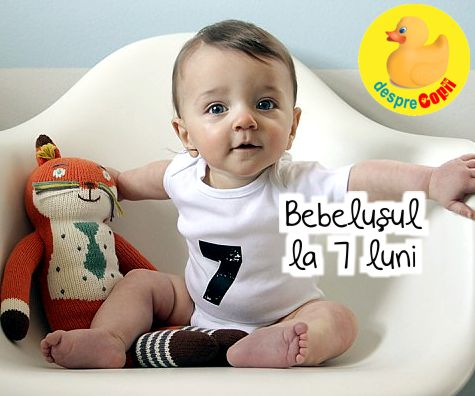 Bebelusul de 7 luni