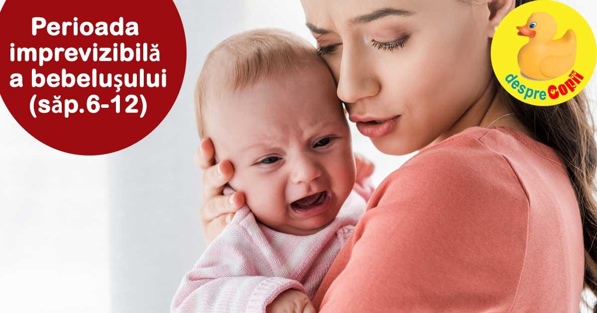 Bebelusul intre saptamanile 6-12: saptamanile in care bebe refuza rutina si este imprevizibil - iata niste sfaturi
