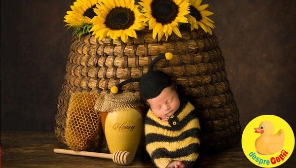 Bebelusii nascuti in august: 7 lucruri speciale despre ei