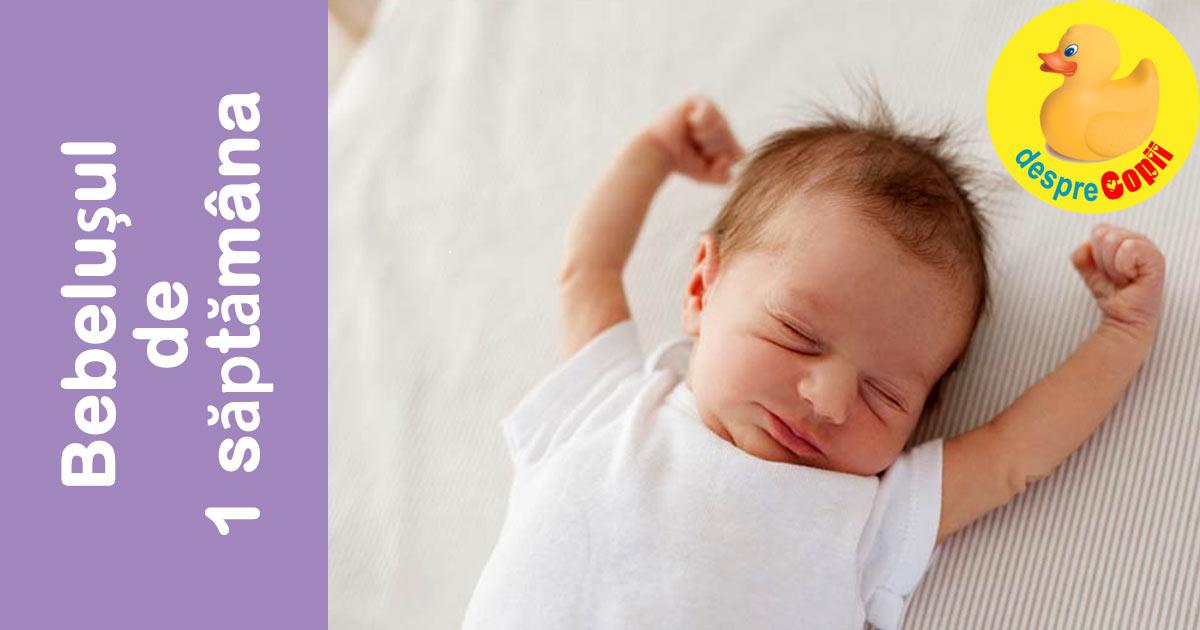 Bebelusul in saptamana 1 de viata