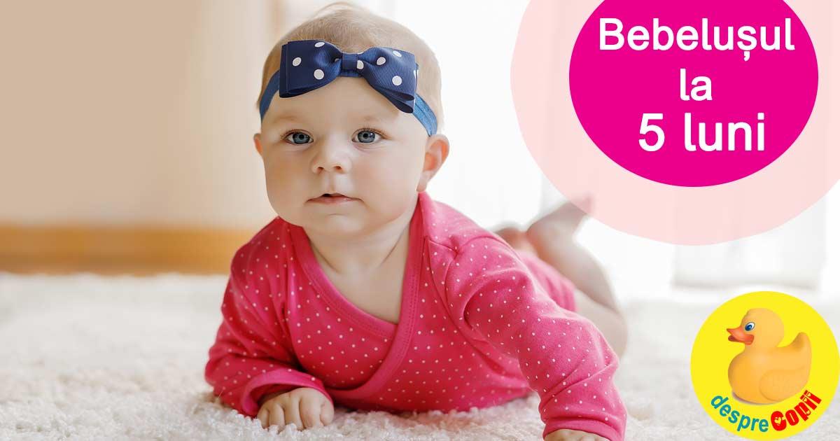 Bebelusul la 5 luni: descopera lumea sunetelor si ar vrea sa stea in fundulet