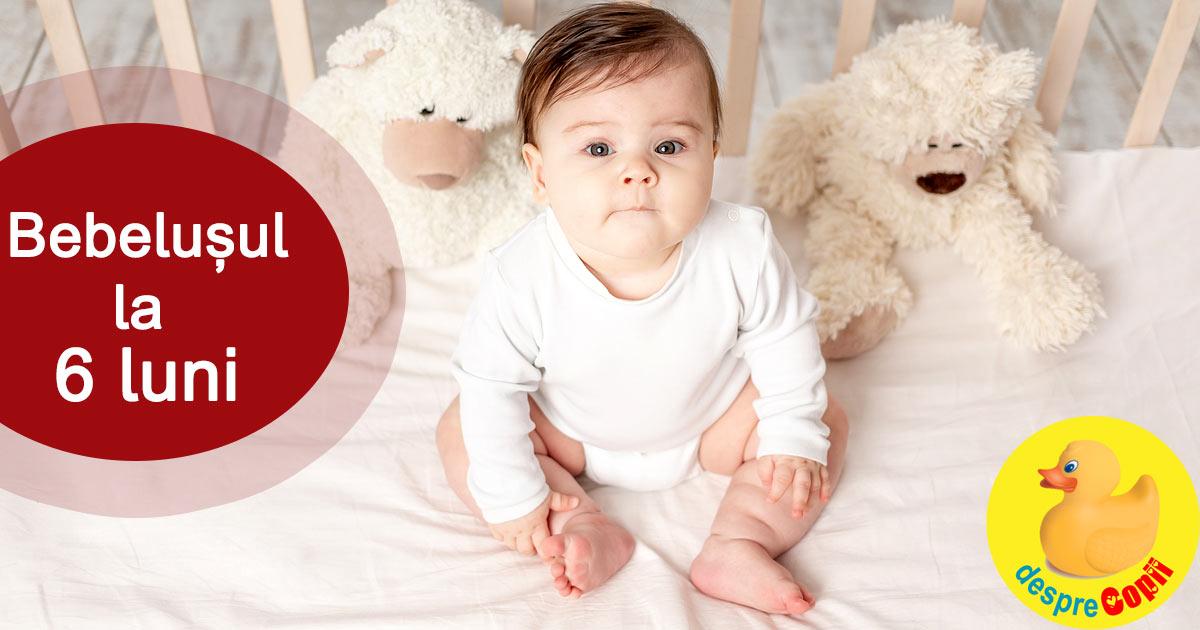 Bebelusul la 6 luni: primul cuvant si primele alimente