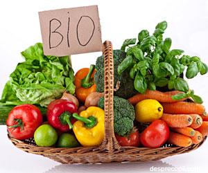 Alimentatia BIO - necesitate sau capriciu?