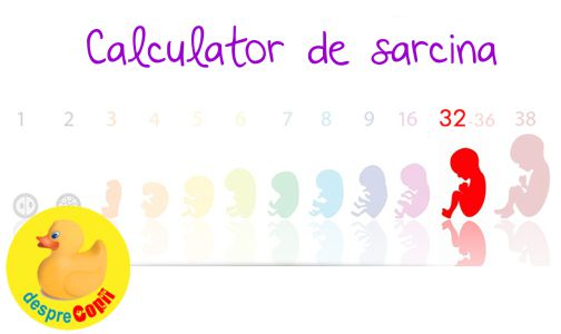 Calculator Sarcina