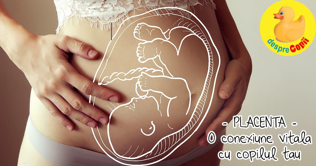 Placenta: acea conexiune vitala cu bebelusul. Iata cum avem grija de ea si ce complicatii pot aparea