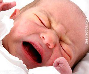 Ceaiuri anticolici pentru bebelusi – recomandari de produse romanesti