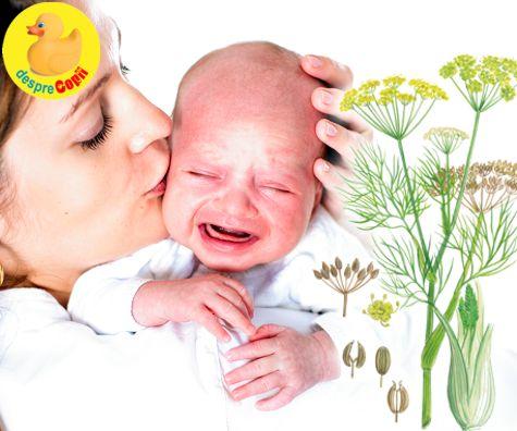 Ceaiul de fenicul in lupta cu colicile bebelusului