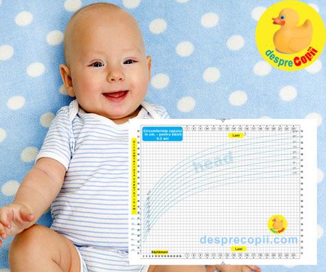 Circumferinta capului bebelusului 0-2 ani - graficul cresterii capului bebelusului baietel
