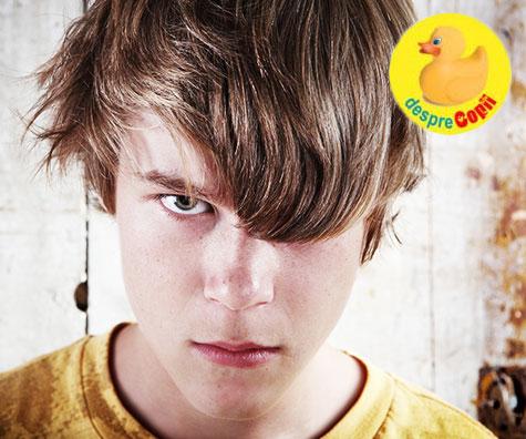 Cauzele crizelor de furie ale adolescentilor: ce le declanseaza si cum trebuie sa reactionam