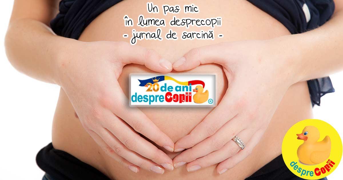 Un pas mic in lumea Desprecopii - jurnal de sarcina