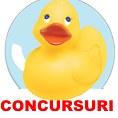 Concursuri la Desprecopii.com