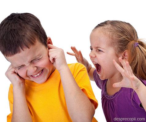 10 solutii simple pentru a gestiona rivalitatea frate – sora