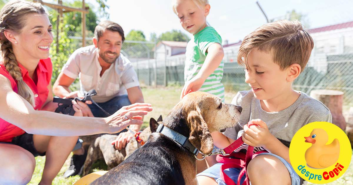 Copiii si animalele de companie - o relatie simbiotica