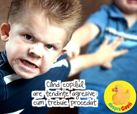 Ce facem cand copilul are tendinte agresive