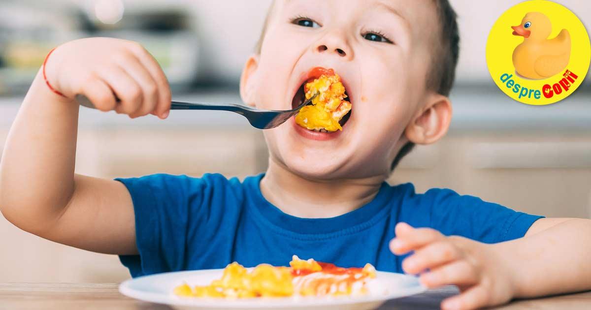 Cat de des putem oferi oua copiilor mici - iata sfatul nutritionistului