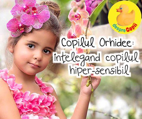 Copilul Orhidee - intelegand copilul hiper-sensibil