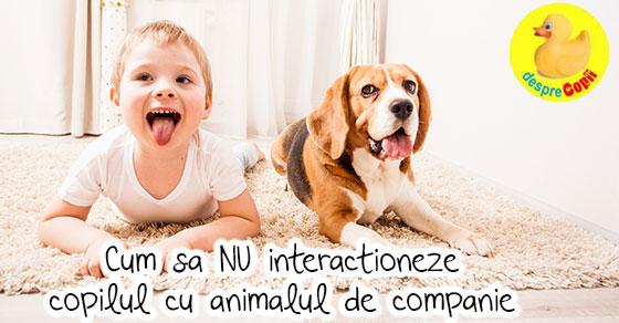 Cum sa NU interactioneze copilul cu animalul de companie