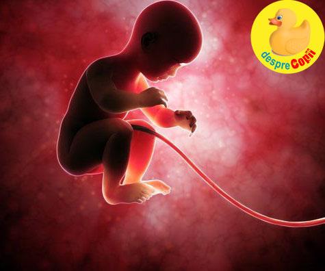 Ce se intampla la nastere daca bebelusul are cordonul ombilical in jurul gatului? - iata ce spune medicul ginecolog