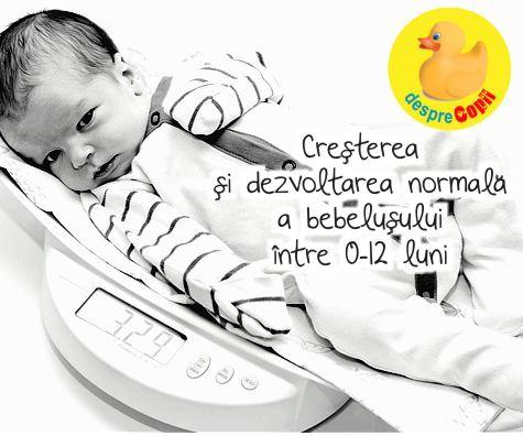 Cresterea si dezvoltarea normala a bebelusului intre 0-12 luni