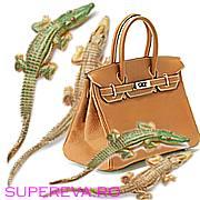 Crocodili si posete Hermes