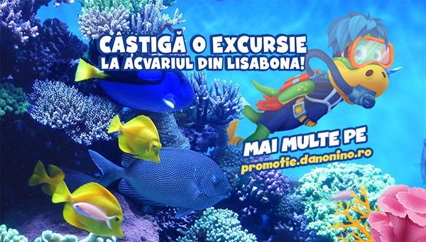 Exploreaza lumea subacvatica alaturi de Dino si poti castiga o excursie la acvariul din Lisabona