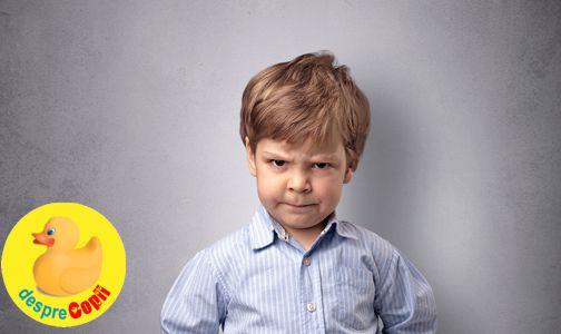 Cand copilul  ignora regulile de disciplina: de ce o face si cum reactionam