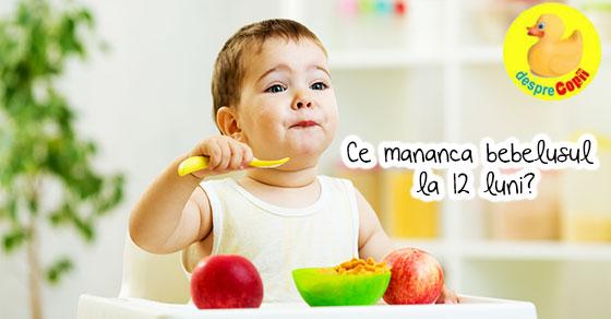 Ce mananca bebelusul la 12 luni: alimente esentiale si sugestii de retete