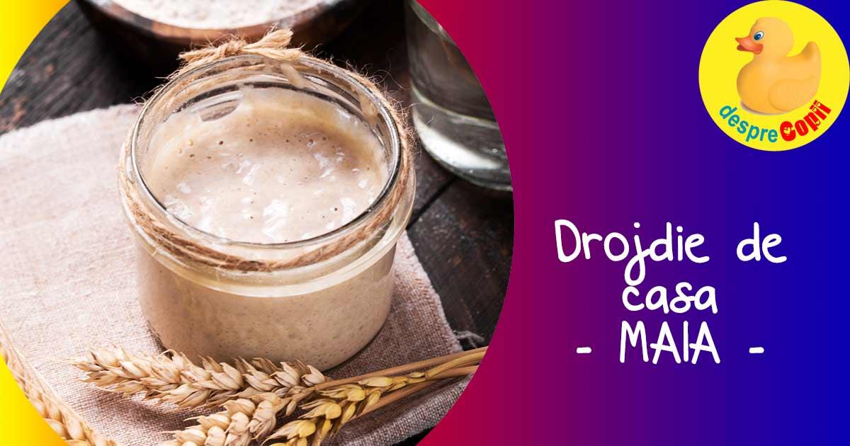 Iata cum se prepara drojdia proaspata in casa (maia)
