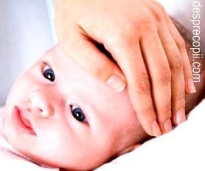 febra-bebelus-1.jpg