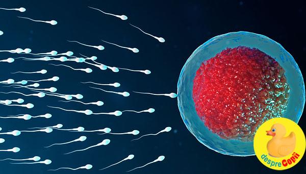 Cinci secrete de fertilitate pe care ar fi trebuit sa le stiu mai devreme  - confesiunile unei mamici medic