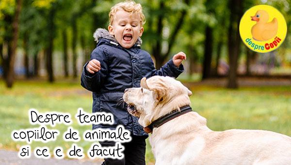 Teama copiilor de animale: cum o abordam