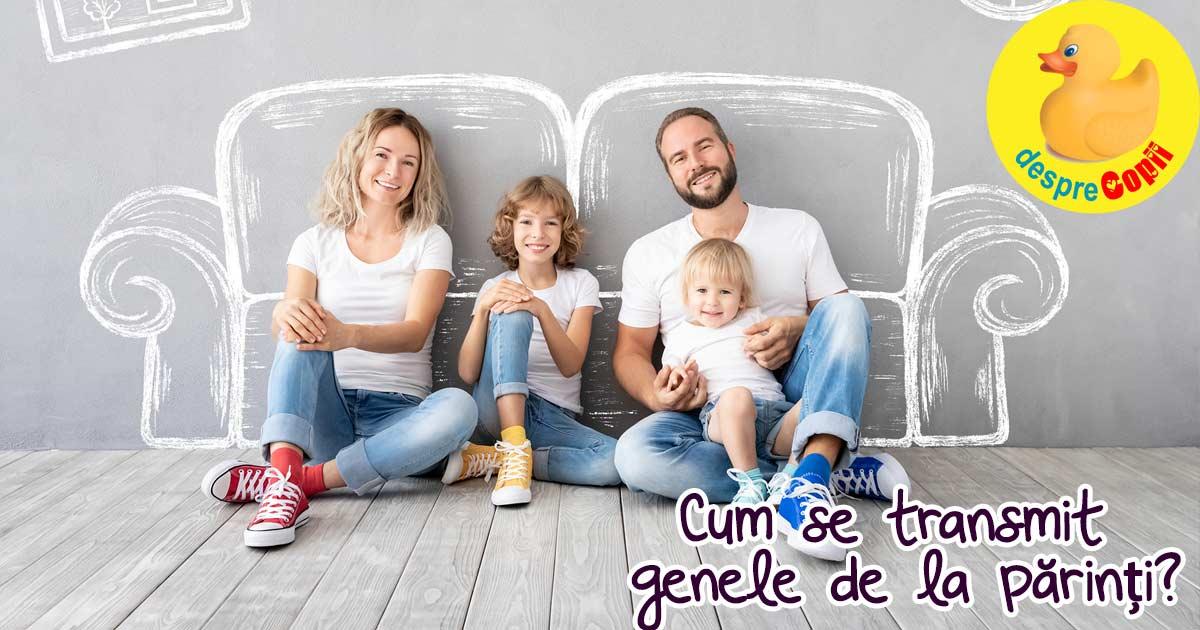 Cum se transmit genele de la parinti: ce transmite mama și ce transmite tata copilului