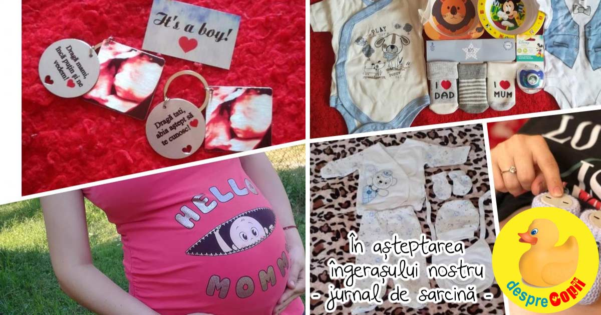 In asteptarea ingerasului nostru: spre cea mai frumoasa perioada a vietii - jurnal de sarcina