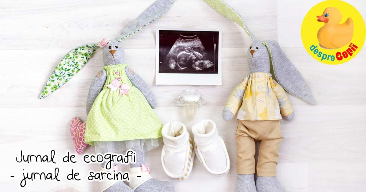 Ce facea bebe in burtica - sau despre ecografii in sarcina - jurnal de sarcina