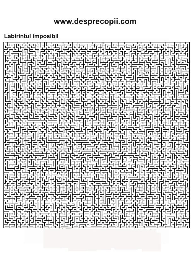 Labirintul imposibil - plansa colorat