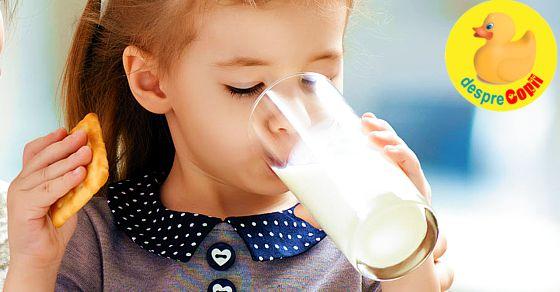 Laptele in alimentatia copilul de peste 1 an