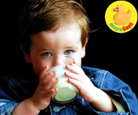 Ce fel de lapte dam copilasului de peste 1 an?