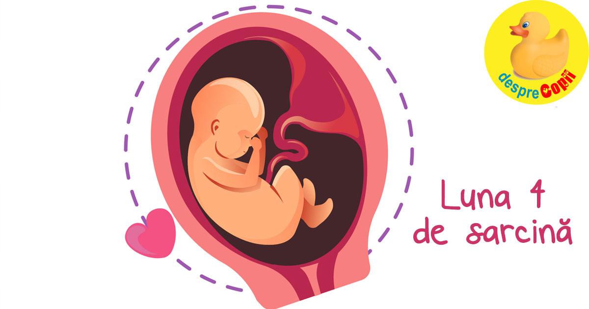 Luna 4 de sarcina: incep miscarile bebelusului si iata de ce ii poti canta deja