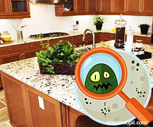 Microbii din bucatarie – unde se ascund si cum ii indepartam