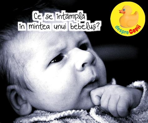 Ce se intampla in mintea unui bebelus?