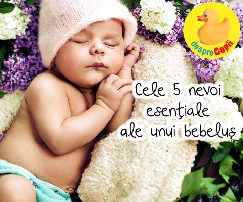 Cele 5 nevoi esentiale ale unui bebelus