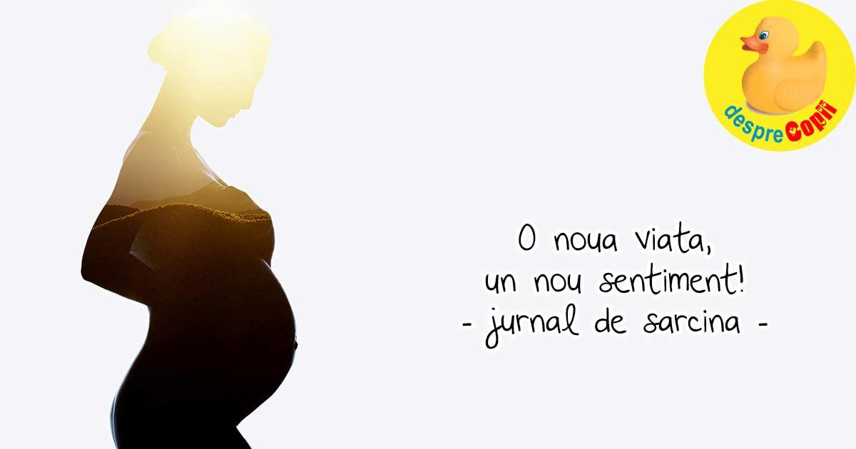O noua viata, un baietel ne va intregi familia - jurnal de sarcina
